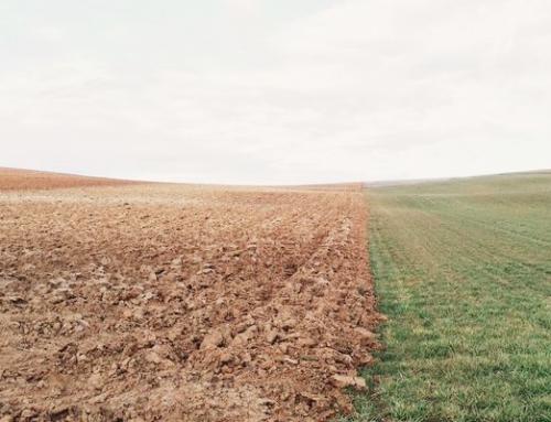 Robert Franken – Keine Innovation ohne Nachhaltigkeit